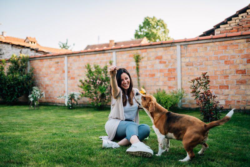 Chica jugando con su perro en el jardín para fortalecer el vínculo