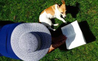 Novelas de perros: 18 libros con protagonista canino