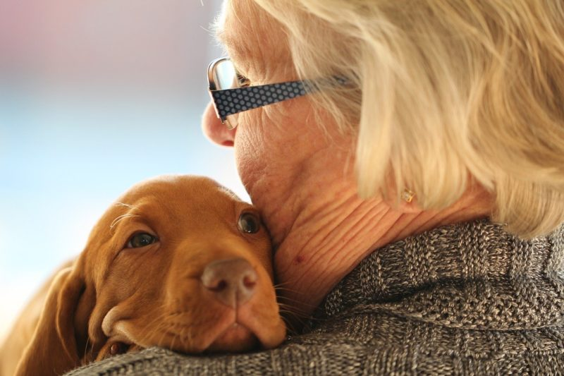 perro con su dueña - Cosas que hacer con tu perro si te falta tiempo