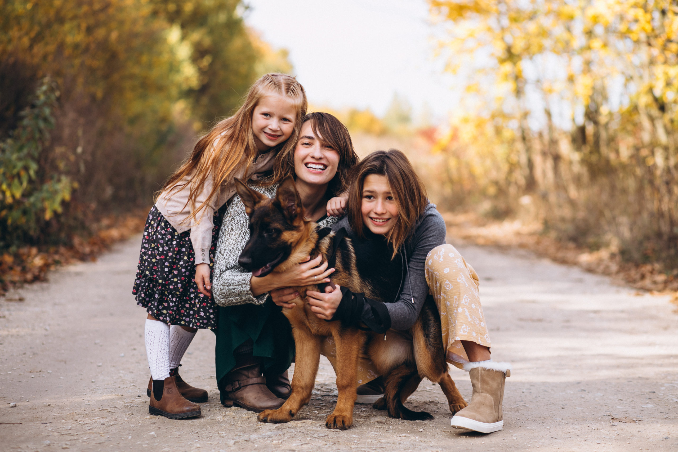 consulta caninas Integracion del perro en casa